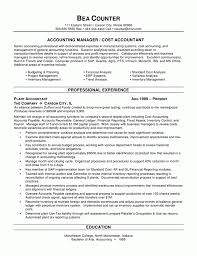 Accounting Intern Resume Examples by Resume Best Resume Objective Statements Cv Template Copy And