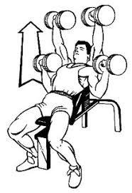 Flat Bench Press Dumbbell Ajit Kumar Chest Exercise