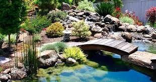 Mini Water Garden Ideas Water Garden Ideas Exteriors Fish Pond Designs Easy Fish Pond