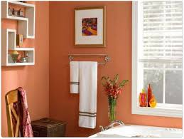 small bathroom wall color ideas small bathroom wall color ideas the 25 best walk in shower