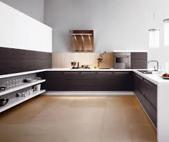 Kitchen Cabinets In San Diego by Riveting Photograph Of Duwur Cool Mabur Excellent Yoben Stylish