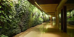 Indoor Garden Wall by Living Living Wall Planter Diy Remarkable Interior Vertical