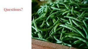 veganism a platform for participatory politics 10 questions for