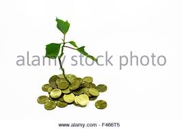 pile of money coins with small green tree light bulb and paper