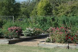 South Texas Botanical Gardens by Texas Water Star Earth Kind Landscaping Workshop Slated Feb 14 In