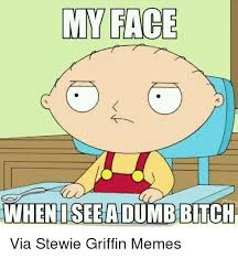 Dumb Bitch Meme - my face when isee a dumb bitch via stewie griffin memes bitch