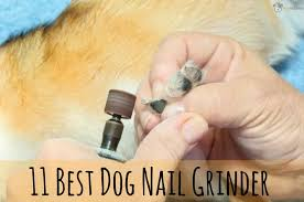 11 Best Dog Nail Grinders 2017 [Buyers Guide Pinterest