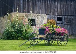 Old Barn Photos Old Barn Stock Images Royalty Free Images U0026 Vectors Shutterstock