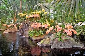 Botanical Garden Orchid Show The Nybg Orchid Show Traveling Back In Time With The World S Most