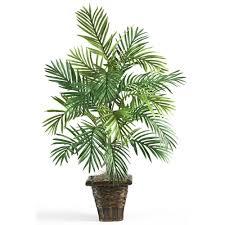 silk plants nearly 38 in areca palm silk plant with wicker basket