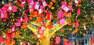 wishing tree chinatown wishing tree in singapore steps