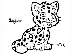 7 images of rainforest jaguar coloring pages jaguar animal