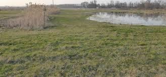 chambre d agriculture de l isere terre dauphinoise
