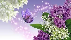 blessings spring hd desktop wallpaper widescreen high
