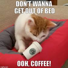 Get Out Of Bed Meme - don t wanna get out of bed ooh coffee imgflip