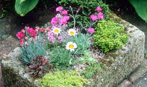 Rock Garden Plants Uk Alan Titchmarsh Show But Don T Tell Garden Style