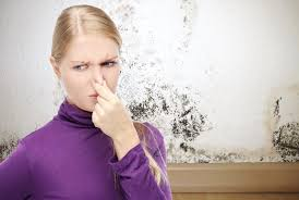 how to get rid of musty smell in furniture how to get rid of musty smell in house