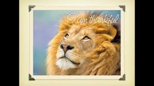 the best thanksgiving song the power of gratitude praise