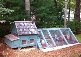 Building Backyard Chicken Coop My Backyard Chickens Coop Home Outdoor Decoration