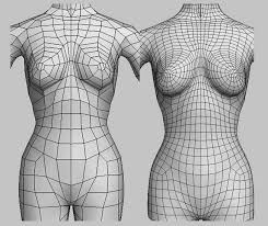 Female Body Reference For 3d Modelling 104 Best 3d Topology Images On Pinterest Low Poly Wireframe And