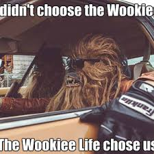 Chewbacca Memes - chewie and the gang by greveworm meme center