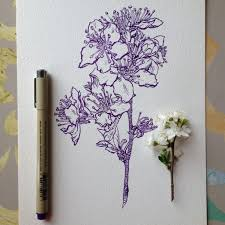 photos beautiful flowers drawings pencil images drawing art