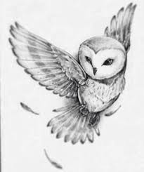 image result for flying owl tattoo hedwig pinterest owl