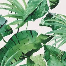 Papier Peint Vert Anis by 50308 1 P1 Jpg