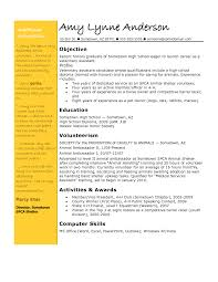 Entry Level It Resume Resume Objective Examples For First Job Teen Resume Templates