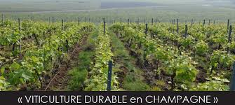 chambre d agriculture 51 certifier exploitation marne