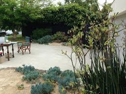 melbourne native plants the best garden designer in australia u2013 janna schreier garden design