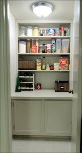 Ikea Kitchen Base Cabinet Kitchen Ikea Kitchen Base Cabinets Storage Cabinets With Doors