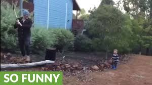 toddler finds dad u0027s wood chopping absolutely hilarious youtube