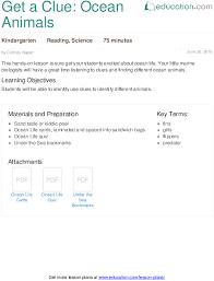 noun or verb lesson plan education com