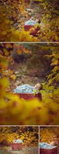 spirit halloween store kingman az 71 best lisa holloway photography images on pinterest lisa