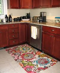 Apple Kitchen Rugs Fascinating Apple Kitchen Rug Rugs Apple Kitchen Rugs Sale Apple