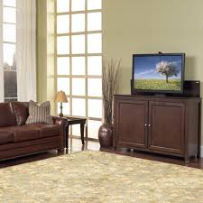 Touchstone Tv Lift Cabinet 11 Best Sound Bars And Tvs Hidden In Cabinet With Lift Kits Images