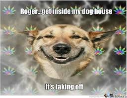 Stoned Dog Meme - stoner dog by quietfat meme center
