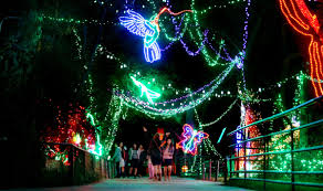 Zoo Lights Pictures by Zoo Lights Now Open At Reid Park In Tucson Local News Tucson Com