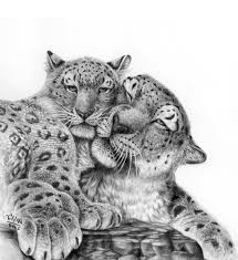 pencil art of animals love mother animal pencil drawings drawing