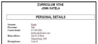 curriculum vitae exles for students in south africa how to write a great professional curriculum vitae cv student