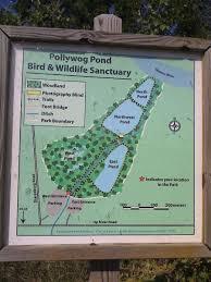 Corpus Christi Map Pollywog Pond Bird U0026 Wildlife Sanctuary Corpus Christi Best