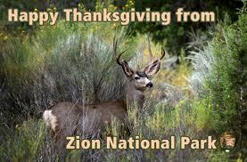 zion national park zionnps