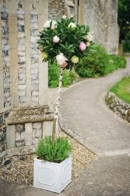 Topiaries Wedding - 14 best bay trees images on pinterest topiaries wedding decor
