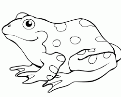 beautiful frog pictures color 29 coloring print frog
