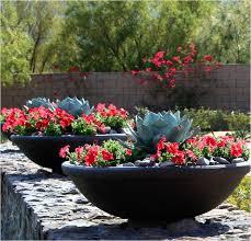 Cactus Garden Ideas Container Garden Design Plans Awesome Charming Cactus Garden Ideas