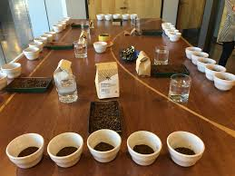 fmrc weekly coffee cupping frothy monkey
