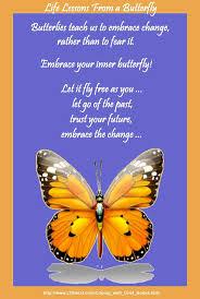 66 best butterfly beauty images on pinterest beautiful