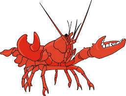 lobster outline clipart cliparts and others art inspiration