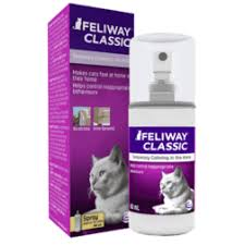 Comfort Zone With Feliway Your Cat Not Eating